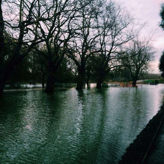 Today the flood came in sandwich