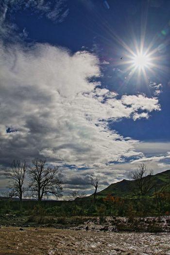 sun Acqua Corrente Beauty In Nature Cloud Cloudy Controluce Fiume Simeto Majestic Outdoors Piena Scenics Sicilia Sky The Great Outdoors - 2016 EyeEm Awards