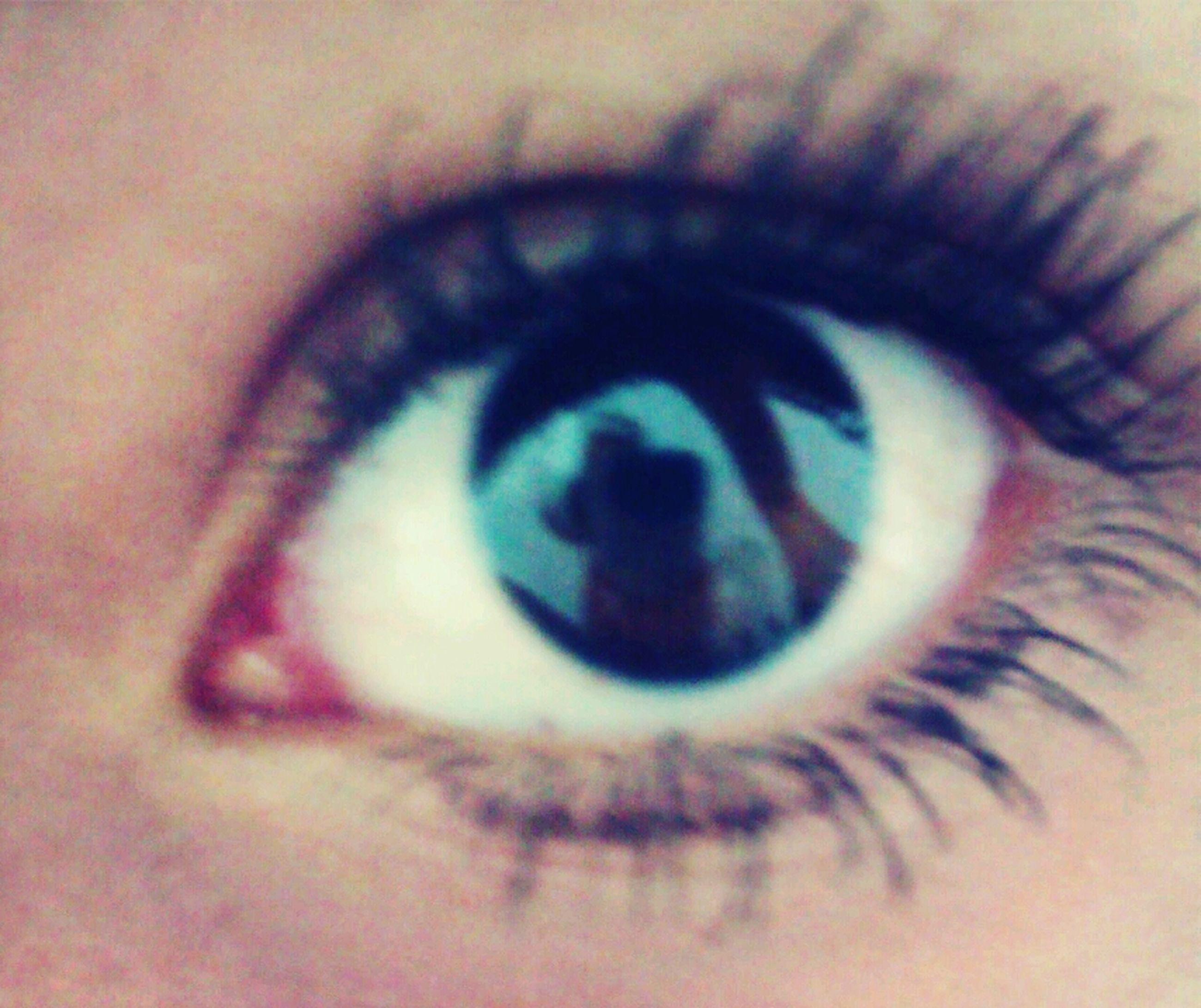 human eye, eyelash, eyesight, close-up, sensory perception, extreme close-up, eyeball, part of, human skin, iris - eye, unrecognizable person, indoors, extreme close up, person, vision, selective focus, lifestyles