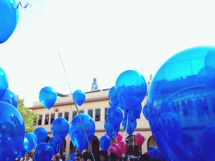 Prom14  Perfect Dreams Baloons