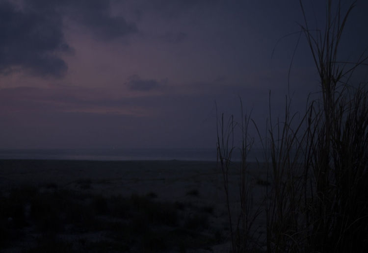 Sky Beauty In Nature Scenics - Nature Tranquility Plant No People Land Tranquil Scene Nature Water Sea Cloud - Sky Horizon Beach Dusk Dark Environment Horizon Over Water Grass Outdoors Marram Grass