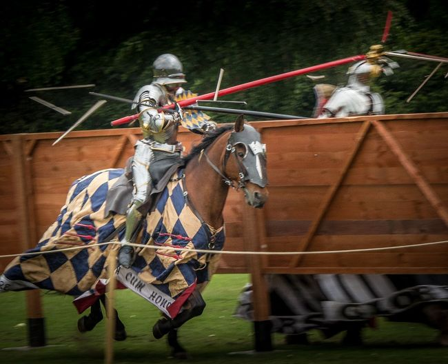 Once a king-always a king, but once a knight is enough Headwear Outdoors Adult People Jousting Jousting Display Horses Knights Armour 650d Canon Canonphotography Shatter Action Competition Leeds Castle Kent Colour Movement Galloping Horses Winner Heraldry 70-300mm