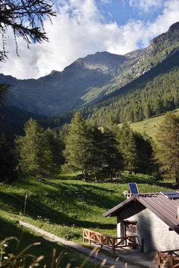 valley Mountain