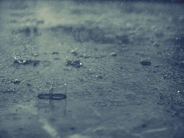 coming back home after years to fall again in love with that sweet sound of monsoon Nature On Your Doorstep Rainy Days Monsoon EyeEm EyeEm Nature Lover OpenEdit Leica D-lux Typ109 Monochrome The Moment - 2015 EyeEm Awards at my home in Himachal, India