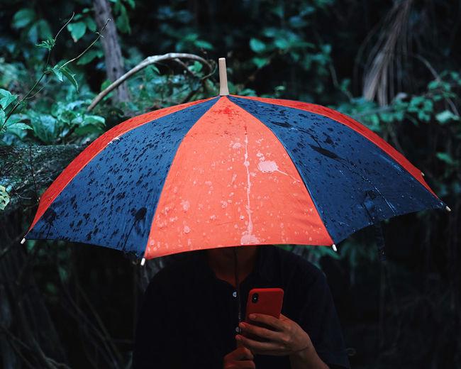 Woman holding umbrella and using phone during rainy season