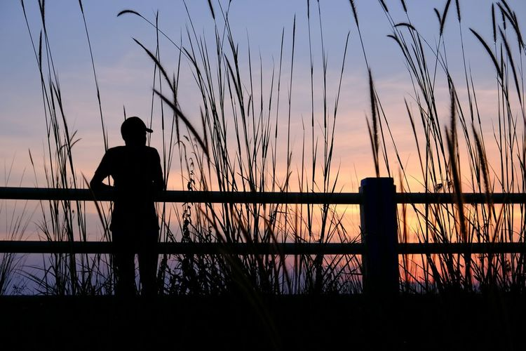 Silhouette Man Standing By Railing On Grassy Field Against Sky During Sunset