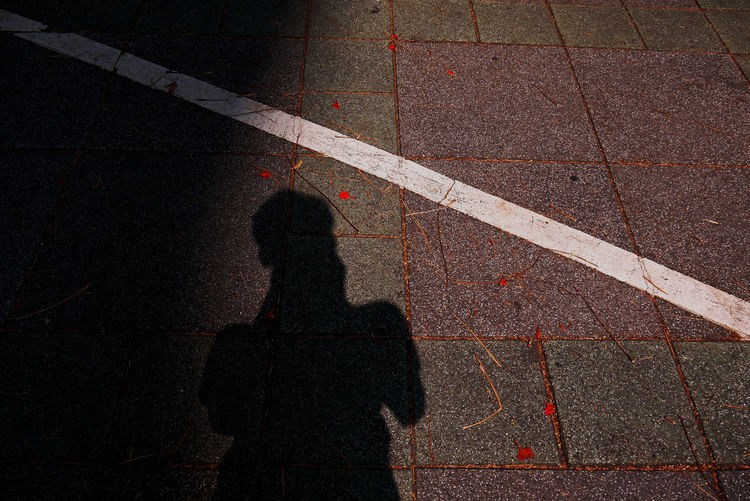 路與我 Road and Me Alone Beautiful LINE Road Shadow And Light Square Sunlight Taking Photos Walking Around Art City Day Focus On Shadow High Angle View Leisure Activity Lifestyles One Person Real People Road Marking Shadow Shadow Of Me Standing Stone Bricks Street White Line