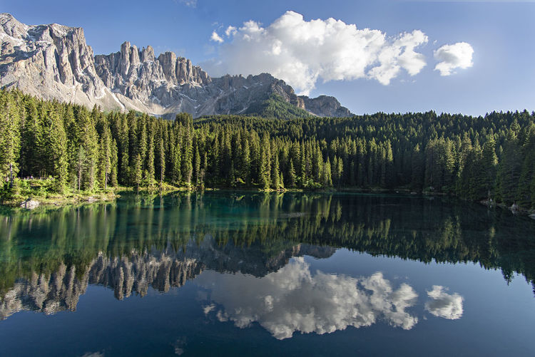 Carezza Lake in the Alps Dolomites, Italy Alps Beauty In Nature Cloud - Sky Coniferous Tree Day Forest Formation Idyllic Italy Lake Mountain Mountain Peak Mountain Range Nature No People Non-urban Scene Outdoors Plant Reflection Scenics - Nature Tranquil Scene Tranquility Tree Water