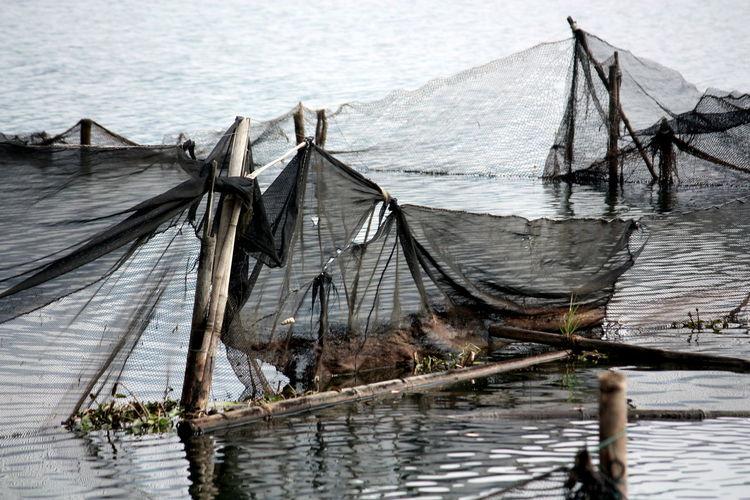 Fishing nets at Begnas Lake, Nepal Begnas Lake Fishing Fishing Net Fishing Nets Lake Net No People Outdoors Water