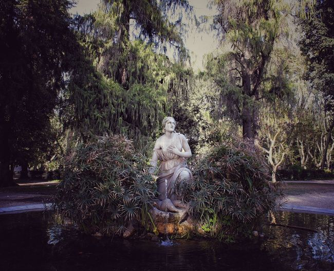 Statue in lake at park
