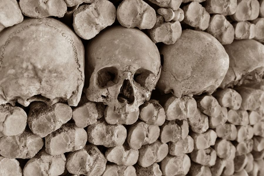Bones High Quality Paris Paris, France  Bone  Catacombes Catacombs Close-up Historical Place Horror Hq Human Bone Human Skeleton Human Skull Iso100 Katakomben Knochen Old Scary Sepia Skull Skulls Spooky Vintage
