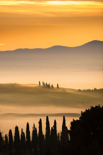 Val d'Orcia, Tuscany, Italy Italia Toscana Tuscany Beauty In Nature Cloud - Sky Environment Idyllic Italy Land Landscape Mountain Nature No People Non-urban Scene Orange Color Outdoors Plant Scenics - Nature Siena Silhouette Sky Sunset Tranquil Scene Tranquility Tree Val D'orcia