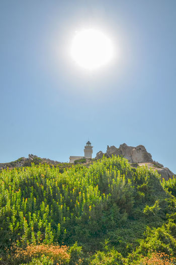 Lighthouse Built Structure Clear Sky Lighthouse_captures Lighthouse Lovers Nature Outdoors Plant Sky Sunlight