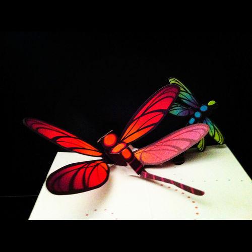 Taking Photos Pop-up Pop-up Card Papercraft Butterflies Butterfly Paper Art