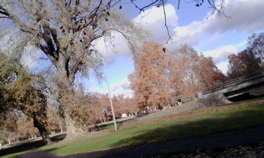 Nice day fir walking Walking Around Jogging Relaxing Taking Photos What A Nice Day! Enjoying Life