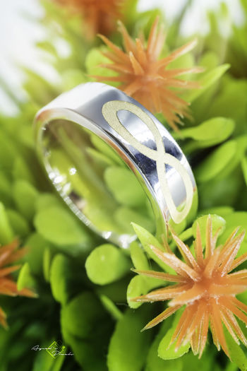 #35mm #Ayceds_Pixels #Infinite #SonyA6300 #closeup #macro #proposal #ring
