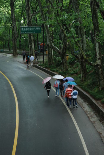 Casual Clothing China Chinese Provinces Forest Girls With Umbrellas Nanjing People Of China Roads In The Forest Roads Of The World Travel Photography Traveling Traveling In China Umbrella Umbrellas Voyages Walking Yellow Lines Let's Go. Together.