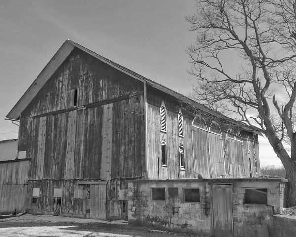 Barn Built Structure Architecture Building Exterior Day Outdoors No People Sky