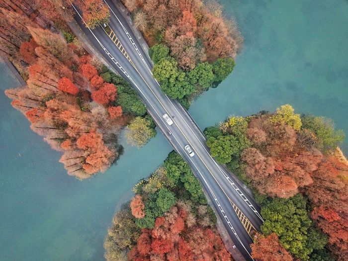 Aerial view of vehicles on bridge over river amidst autumn trees