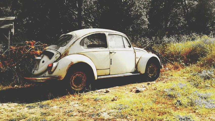 Car Woswos Vosvos Woswos Old Car Old Woswos Cameringo+ Facetune Efect Belemedik Türkiye Adana Pozantı