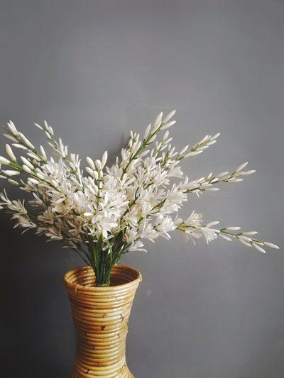 Grey Vase Of