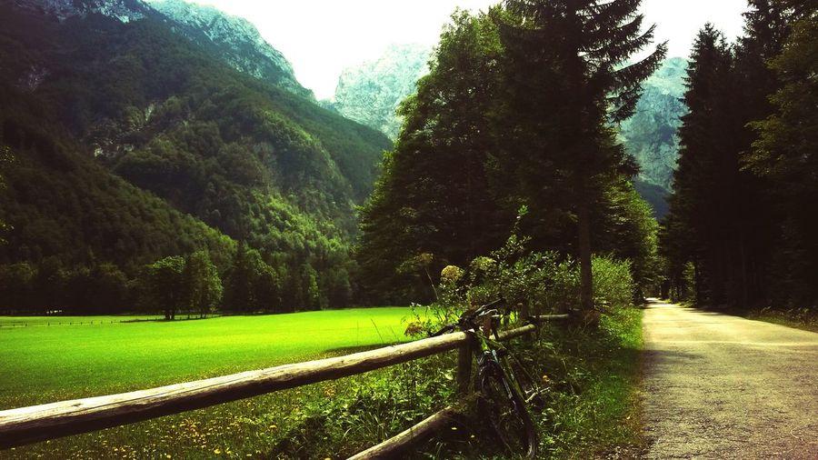 Mountain Biking Logarska Dolina Perfect Day Enjoying Life