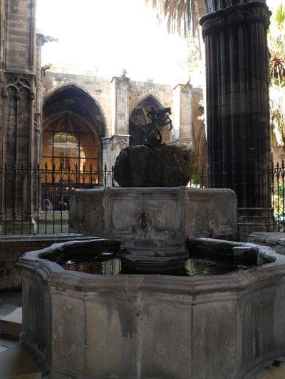 Architecture Barcelona Barcelona, Spain Catalunya Cataluña Catedral Cathedral Church Claustre Claustro Espana-Spain España🇪🇸 Old Religion Spirituality