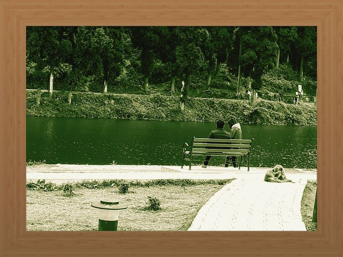 Rear view of people sitting by lake