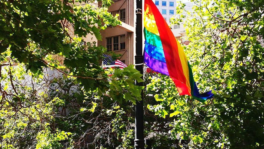 Gayflagfirst EyeEmNewHere Sanfrancisco Gaypride Americanflag Rainbow Flowersinyourhair Multi Colored Tree Flag #FREIHEITBERLIN