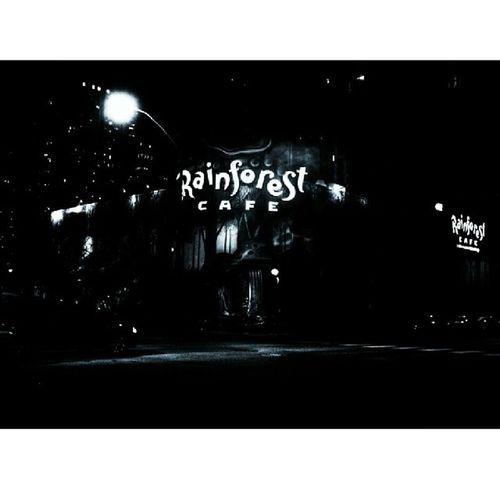 Downtown chicago Rainforestcafe Chicago Downtown Nikon blackandwhite editing