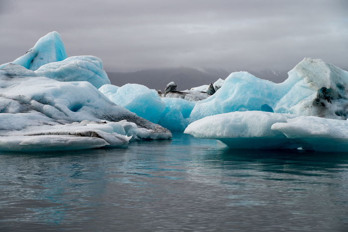 Astrology Sign Beauty Beauty In Nature Cold Temperature Day Floating On Water Frozen Glacier Ice Iceberg Iceberg - Ice Formation Iceland Jökulsárlón Nature No People Outdoors Polar Climate Sea Seal - Animal Silence Sky Social Issues Sunset Tranquility