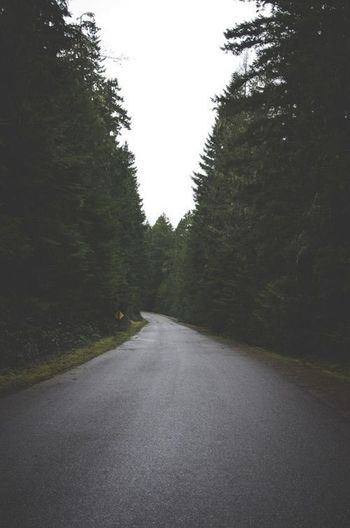 Walking Around Escaping Enjoying Life Taking Photos Forest. ??