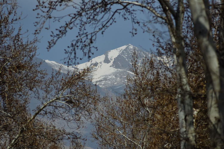 A view to a mountain in Tehran in Iran Hiking Mountain View Sightseeing Tourist Tourist Attraction  Traveling Travelling Cold Temperature Forest Ice Peak Mountain Iran Landscape Mountain Nature No People Outdoors Plant Scenics - Nature Snow Snowcapped Mountain Tehran Tourism Tourist Destination Tree Winter