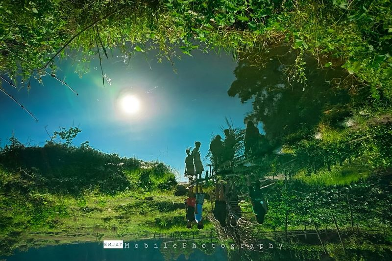 The REAL WORLD of reflection. Sunlight Green Color Tree Sun Grass Growth Tranquility Tranquil Scene Beauty In Nature Reflection Lens Flare Nature Water Outdoors Non-urban Scene Mobile Photography Eyeem Philippines EyeEm Gallery Week Of Eyeem Xperia X XPERIA SONYXPERIAX Xperiax Blue Sky