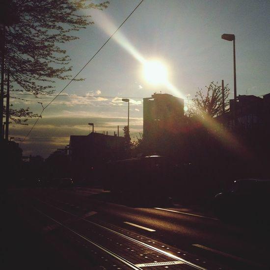 Walking Around Enjoying The Sun Sunshine