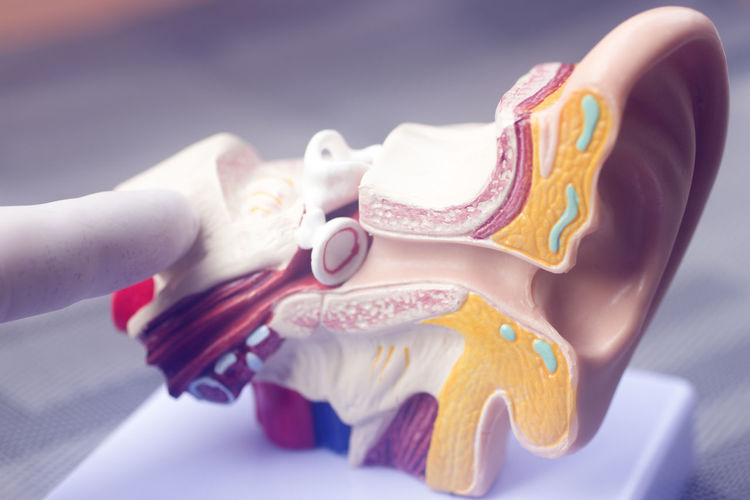 Close-up of woman hand holding multi colored art