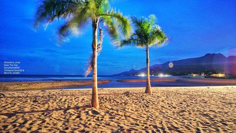 A Breeze of #Laiya #Batangas #SeasTheDay #ADoseOfVitaminSea #LowLightPhotography #Sunrise #LongExposures be like Sand Palm Tree Land Beach Tree Sky Tropical Climate Beauty In Nature Tree Trunk Nature Sea Scenics - Nature Tranquil Scene Tranquility Cloud - Sky Plant