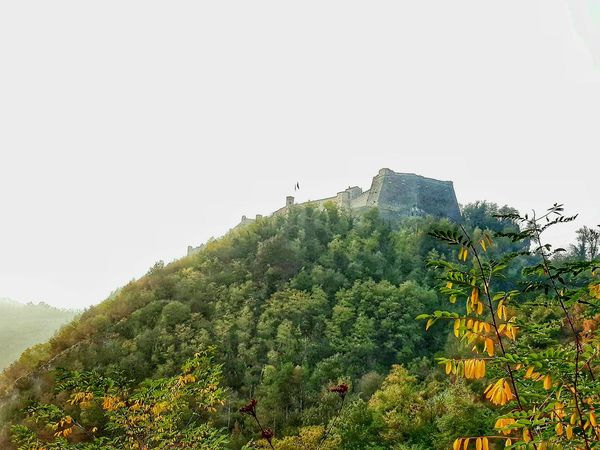 Thank You My Friends 😊 Eyem EyEm Selects Eyem Gallery Eyem Photography Eyem4photography Trees Castle Castles Castle View  Castle Walls Castle On The Mountain Fortezza Autumn Autumn Colours Castle Lovelynatureshots Gavi Italy Sky Green Color Blooming Treetop