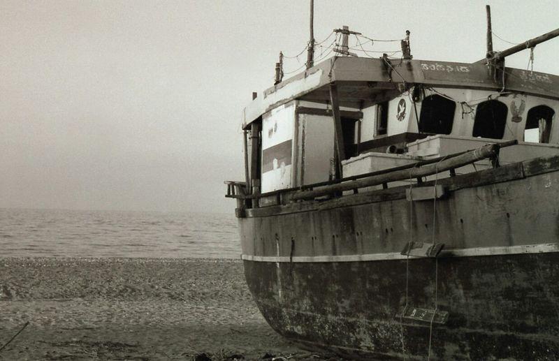 Sea Life 35mm Film No Edits BWlovers Blackandwhite C-41 Developed #photographer #colorfilm
