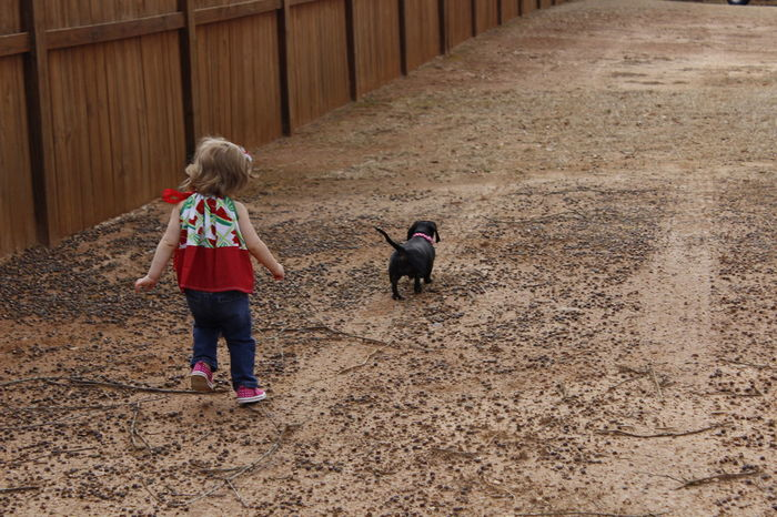A girl and her dog. A Girl And Her Dog A Girls Best Friend. Best Friends For Life  Best Friends ❤ Fun Day Furever Friends. Leading The Way Love Memories Memories ❤ Taking A Walk Together Walking The Dog First Eyeem Photo