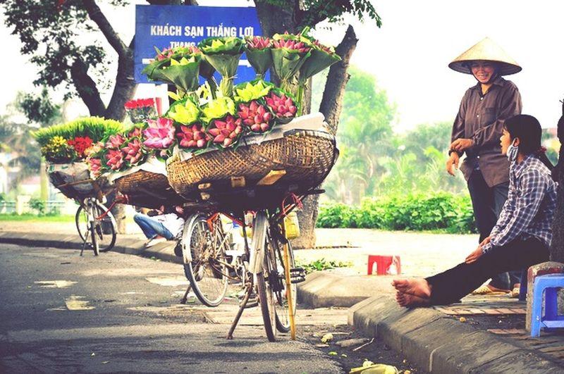 Vietnambeauty Flower