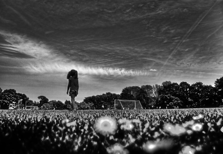 girl in the daisies meadow Black & White Black And White Blackandwhite Daisies Daisies Between Grass Daisies Flowers Daisy Daisy Flower Day Girl Girl Walking On Path. Girl Walking On The Meadow Margaritas Men Nature Only Men Outdoors People Sky Wild Flowers Wild Flowers And Grasses Wild Flowers Bloom