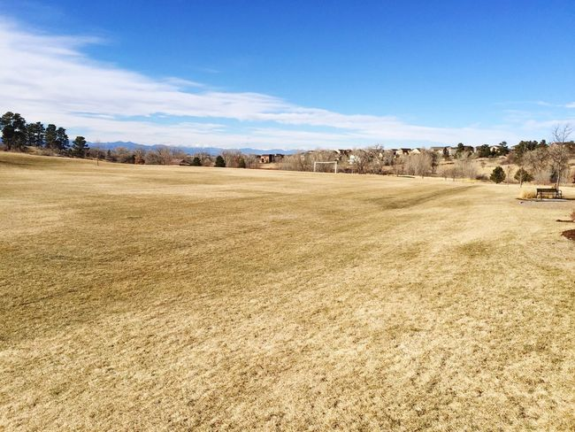 Open space park Parker Colorado suburban suburbs suburbia winter daytime snowless field