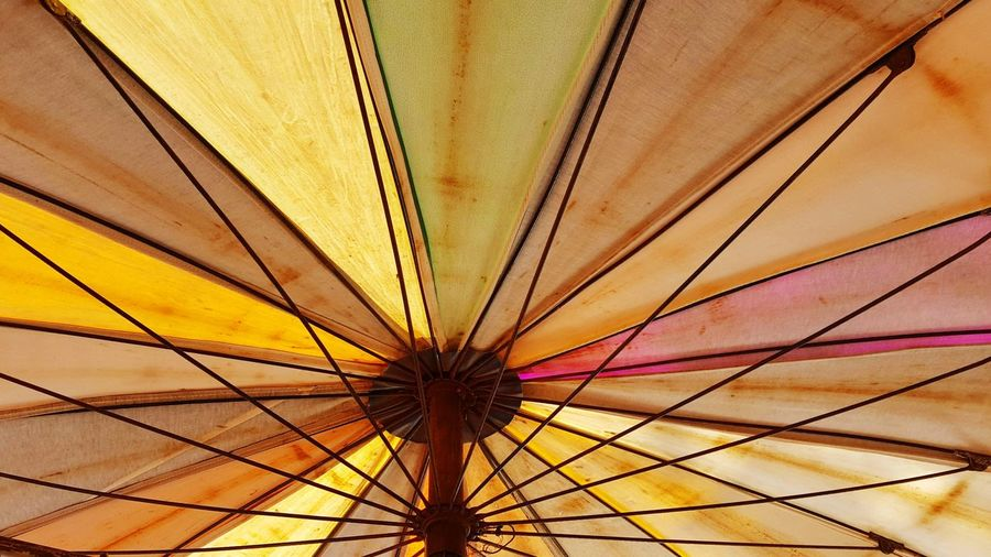 Low Angle View Protection Full Frame Shelter No People Backgrounds Day Outdoors Nature Close-up