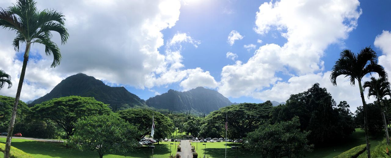 Hawaii Pacific University Mountains Oahu Hawaii College Hawaii Pacific HPU Plant Tree Cloud - Sky Sky Nature Mountain Day Beauty In Nature Scenics - Nature Outdoors Mountain Range Sunlight Green Color No People
