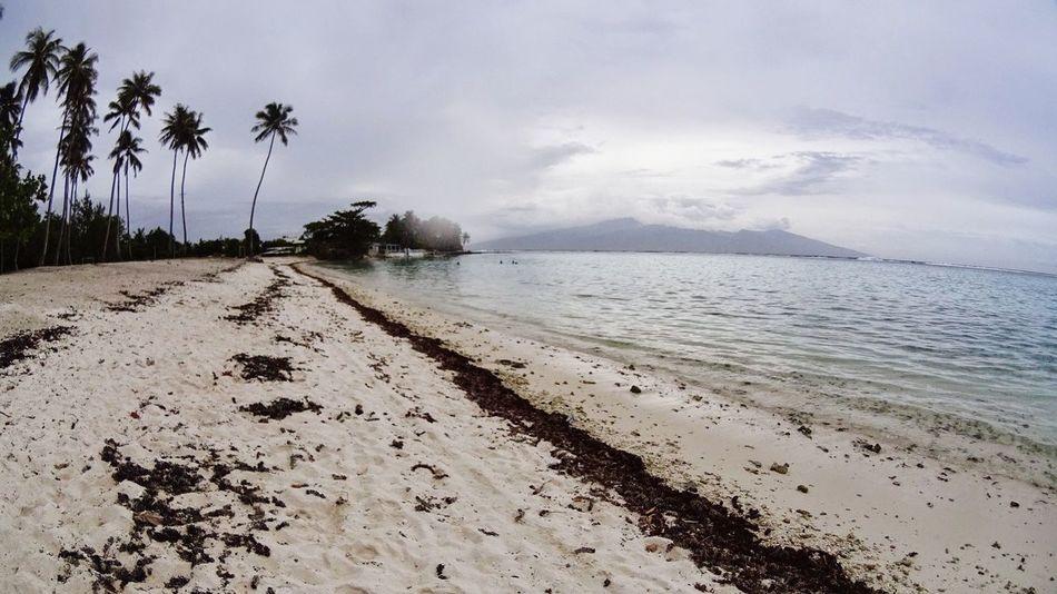 Tahiti Moorea French Polynesia