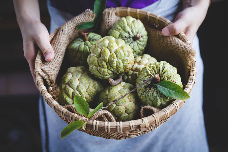 Custard apples in the basket bamboo ASIA Bamboo Basket Burlap Custard Apple Dark Food Food And Drink Fresh Fruit Green Heathy Food Leaf Mãng Cầu Nature Old Wood Plant Raw Sweet Tasty Vietnam Vietnamese Fruit Fresh On Market 2017