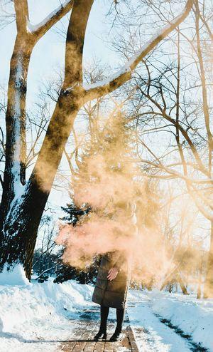 Tree Snow Winter Cold Temperature Water Men Full Length Sky