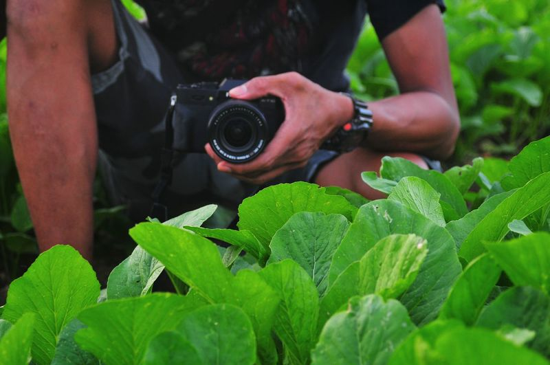 Midsection of man photographing plants with camera while crouching on field