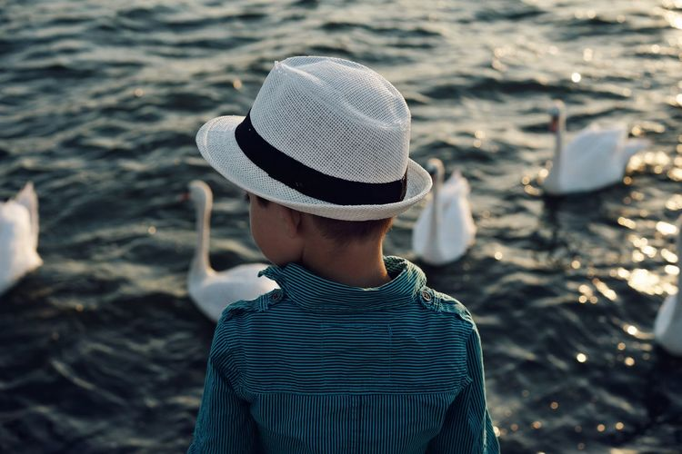 Rear view of boy looking at swan swimming on lake